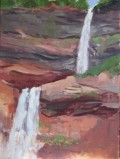 Kaaterskill Falls board AE