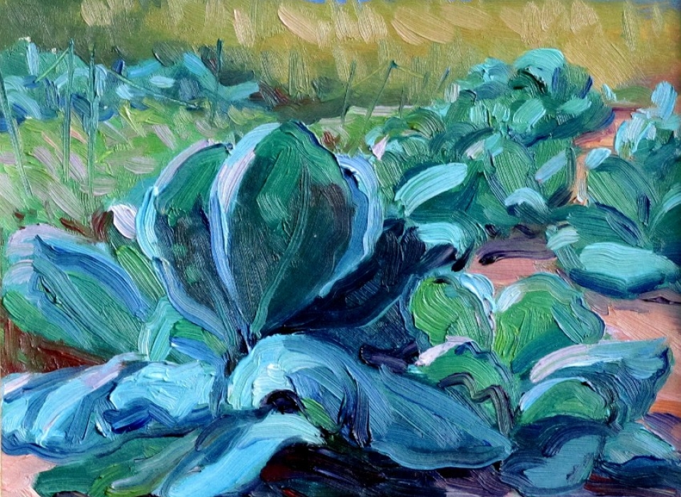 Cabbage Field, a painting by Judith Reeve