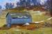 Heifer Barn spring