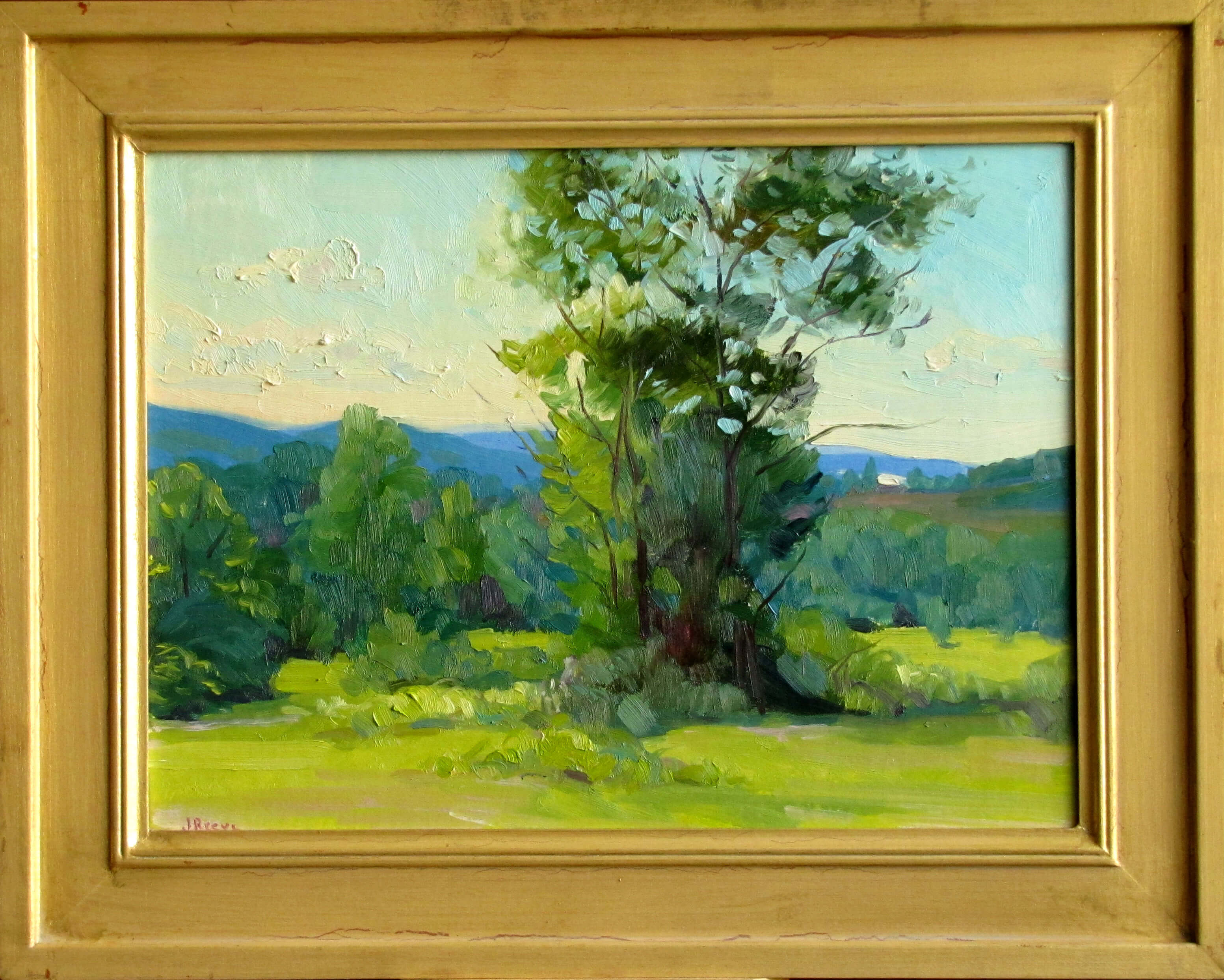"""Trees, Summer Morning,"" painting by Judith Reeve"